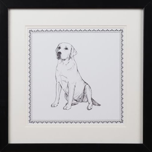 Herriot Labrador